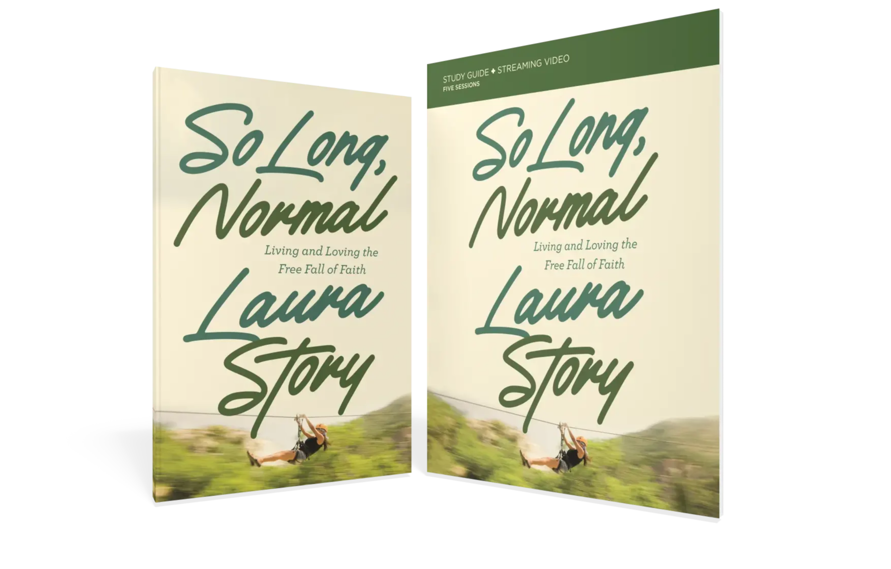 So Long, Normal by Laura Story
