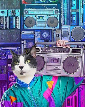 Cat with boombox