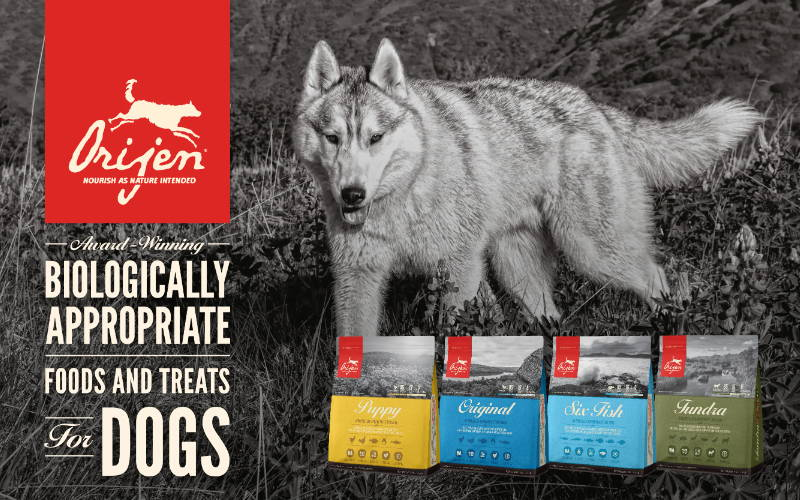 orijen dog and cat food collection at pawpy kisses online pet shop .