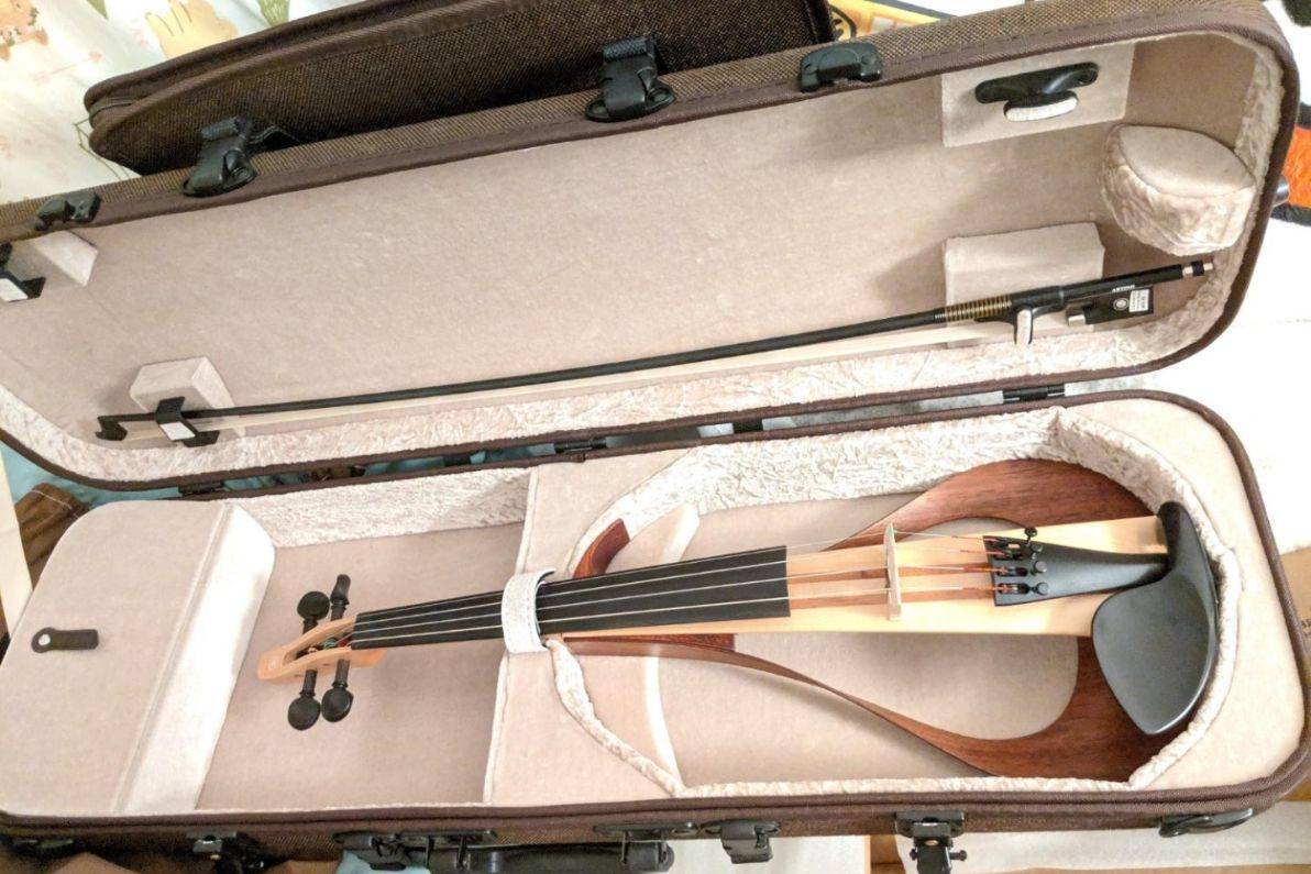 Best electric violin cases