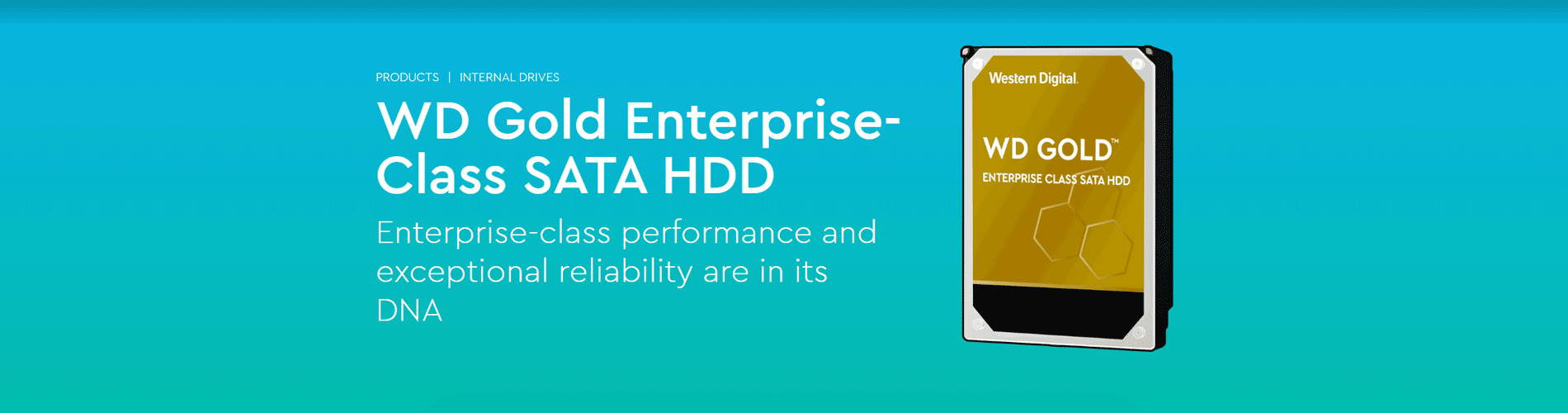 WD Gold Enterprise-Class SATA HDD