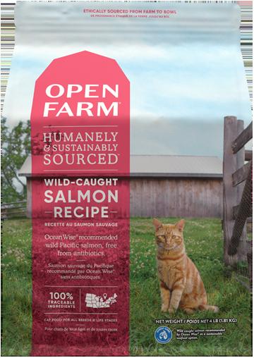 Wild-Caught Salmon Dry Food