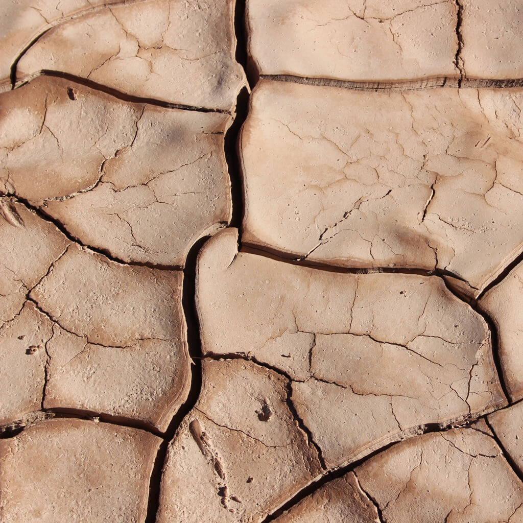Emulgatoren – Five Skincare