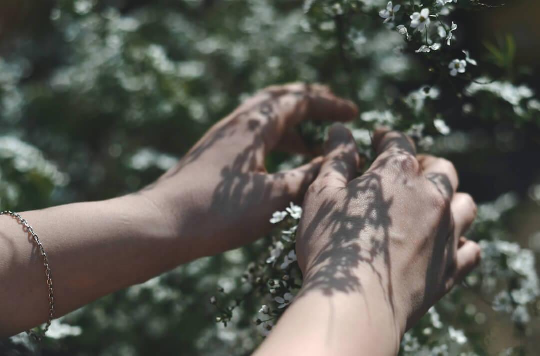 Bio macht den Unterschied in der Kosmetik | Five Skincare
