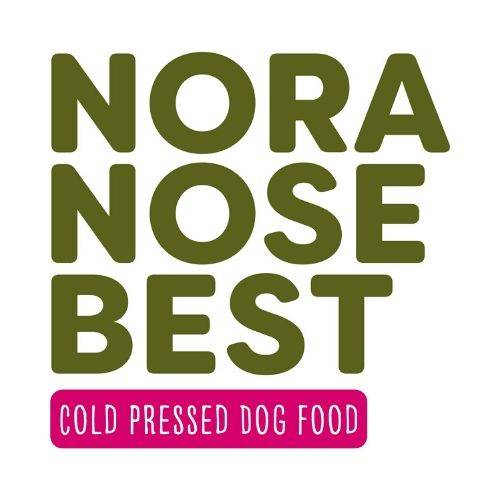 Nora The Labradoodle, Healthy Puppy Food, Nora Nose Best Cold Pressed Dog Food, Nora Nose Best Dog Food