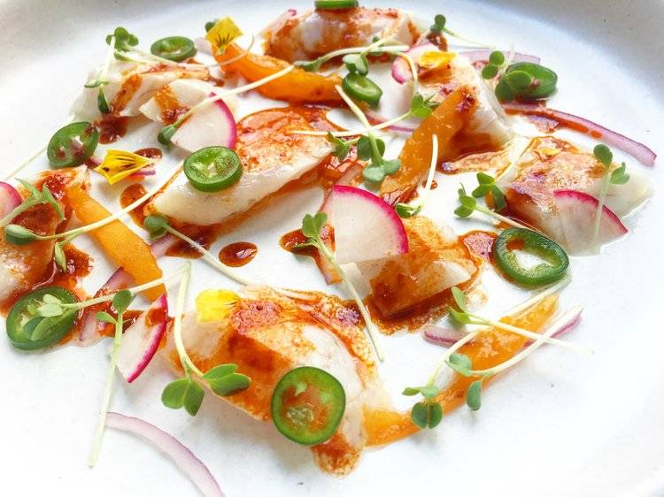 A plate of sea bass with sliced radish, serrano pepper, daikon radish microgreens, chopped onion and a paprika and olive oil dressing.