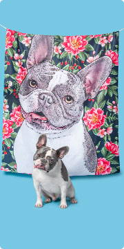 custom pet art of a french bulldog on a fleece blanket with the dog in front
