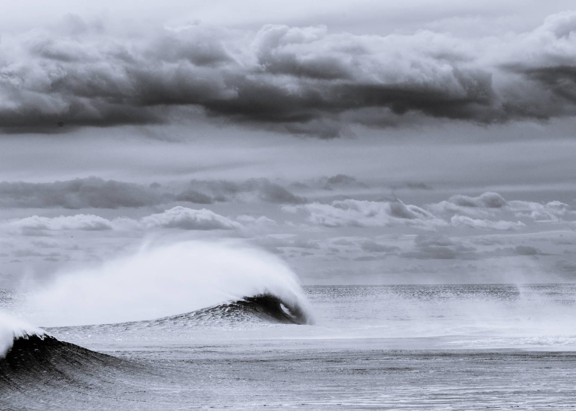 Photo by Mike Vitello