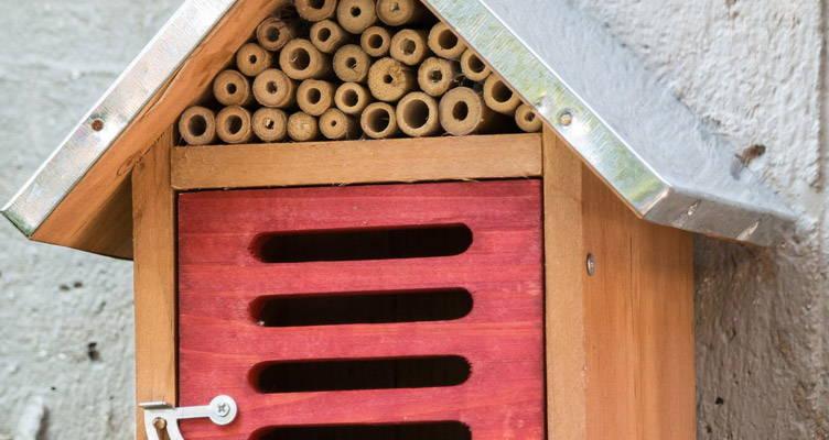 DIY: Facile et ingenieux l'hotel a insectes