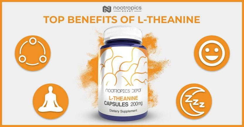 The Top Benefits of L-Theanine