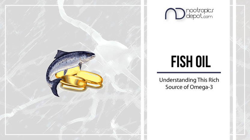 The Ultimate Guide to Fish Oil Supplements