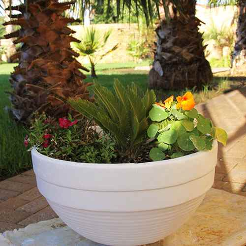 let flower pot dry