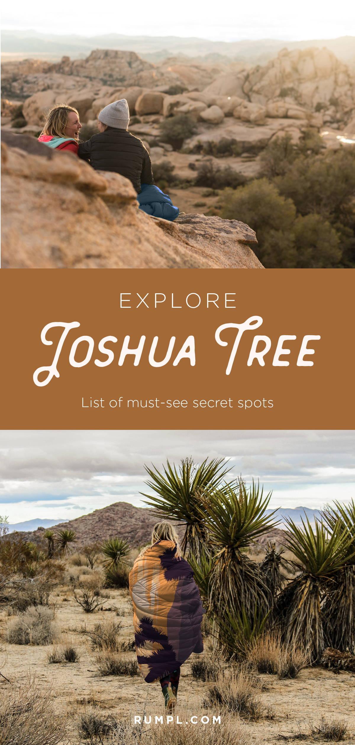 Explore Joshua Tree