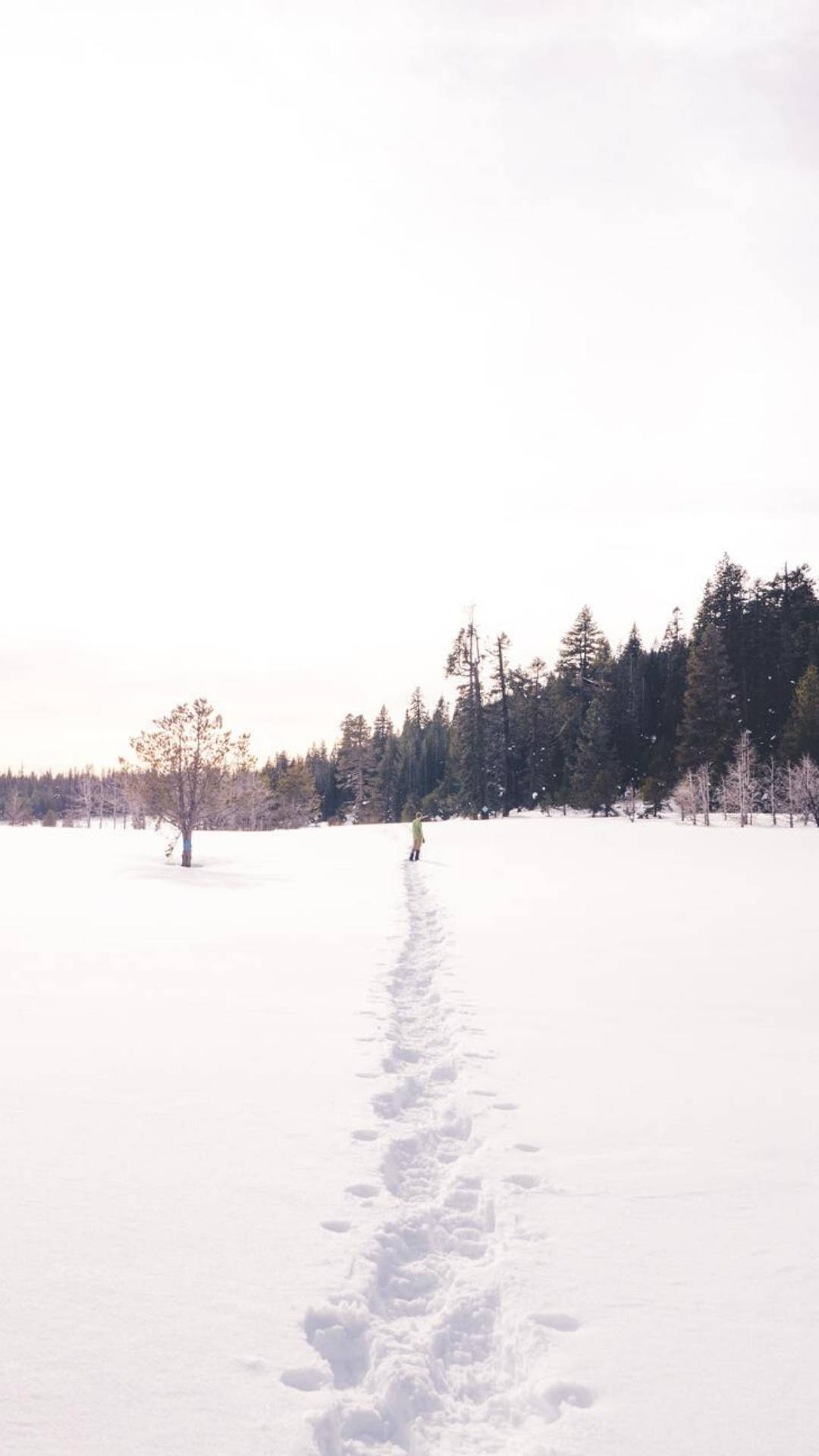 Snowshoe image link to Outdoor Guide Snowshoeing 101