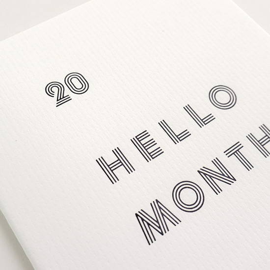 Clear PVC cover - Eedendesign 2020 Hello month A5 dated monthly planner