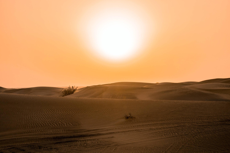 Hot sun in the desert
