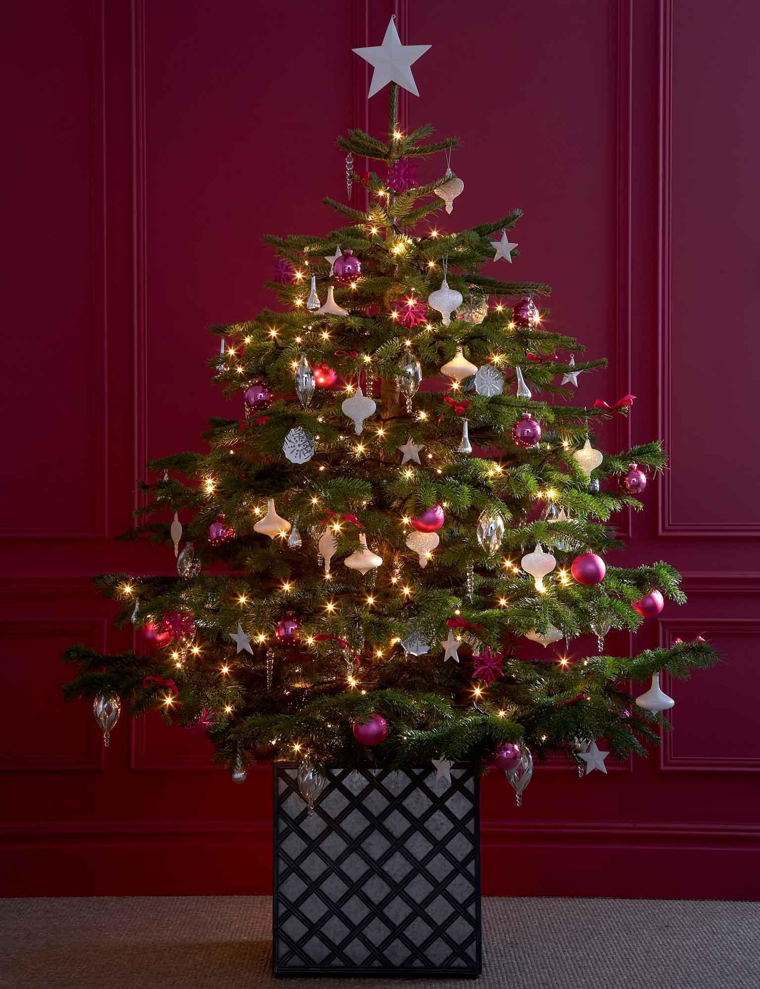 Real Christmas Trees Decorated.Christmas Tree Light Ideas Lights4fun Co Uk