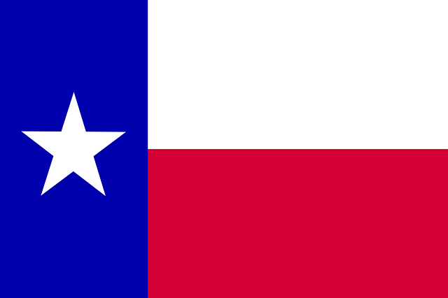 TEXAS FOREIGN QUALIFICATION | DELAWARE BUSINESS INCORPORATORS, INC.