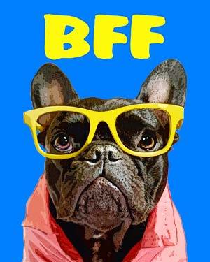 french bulldog with glasses on bff