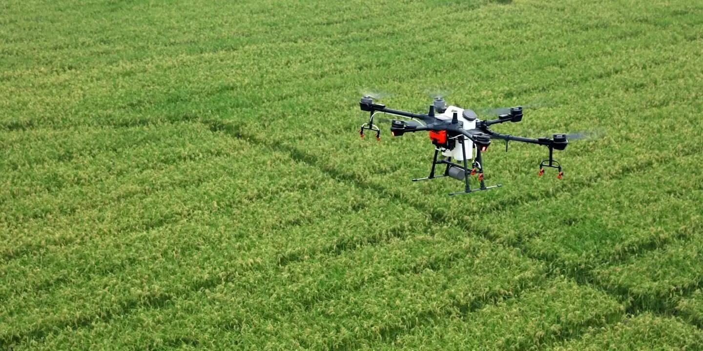P4 Multispectral Dr Drone Canada Data