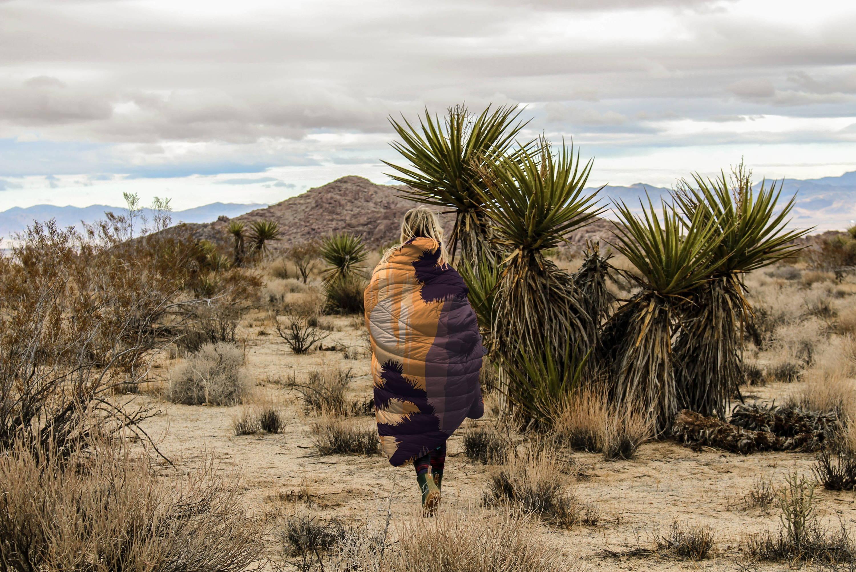 The Joshua Tree Puffy Blanket