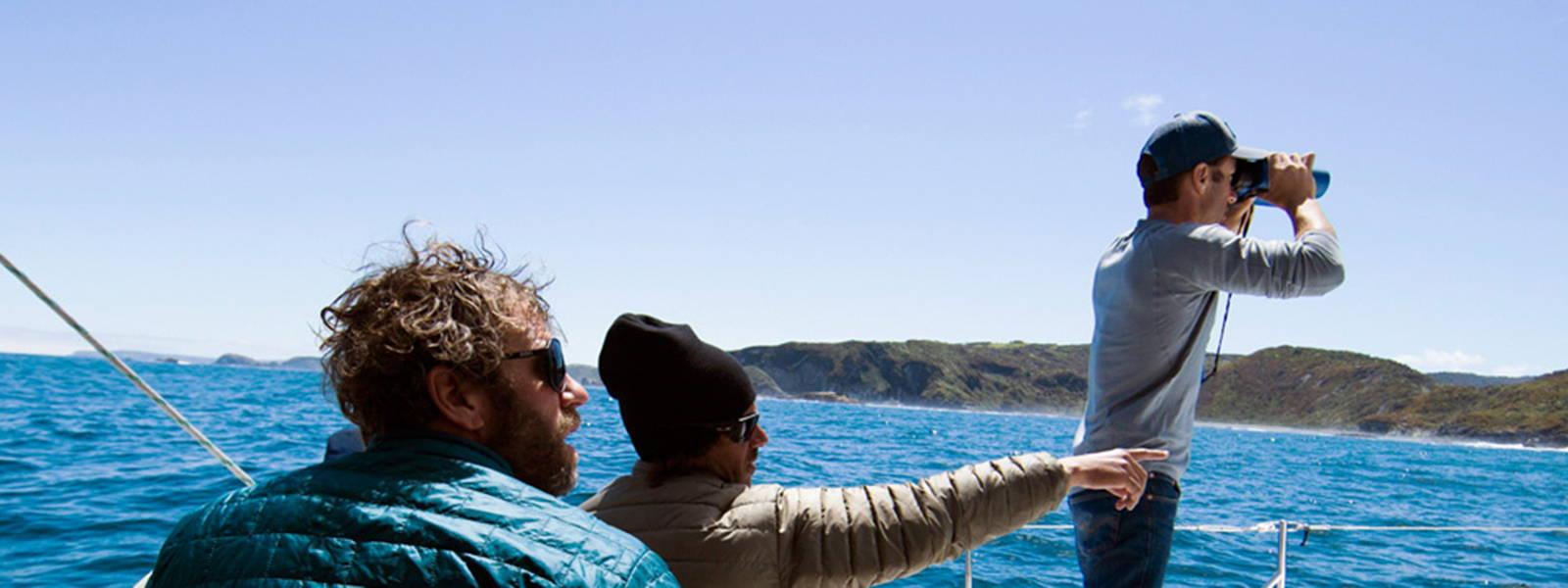 Patagonia models at sea