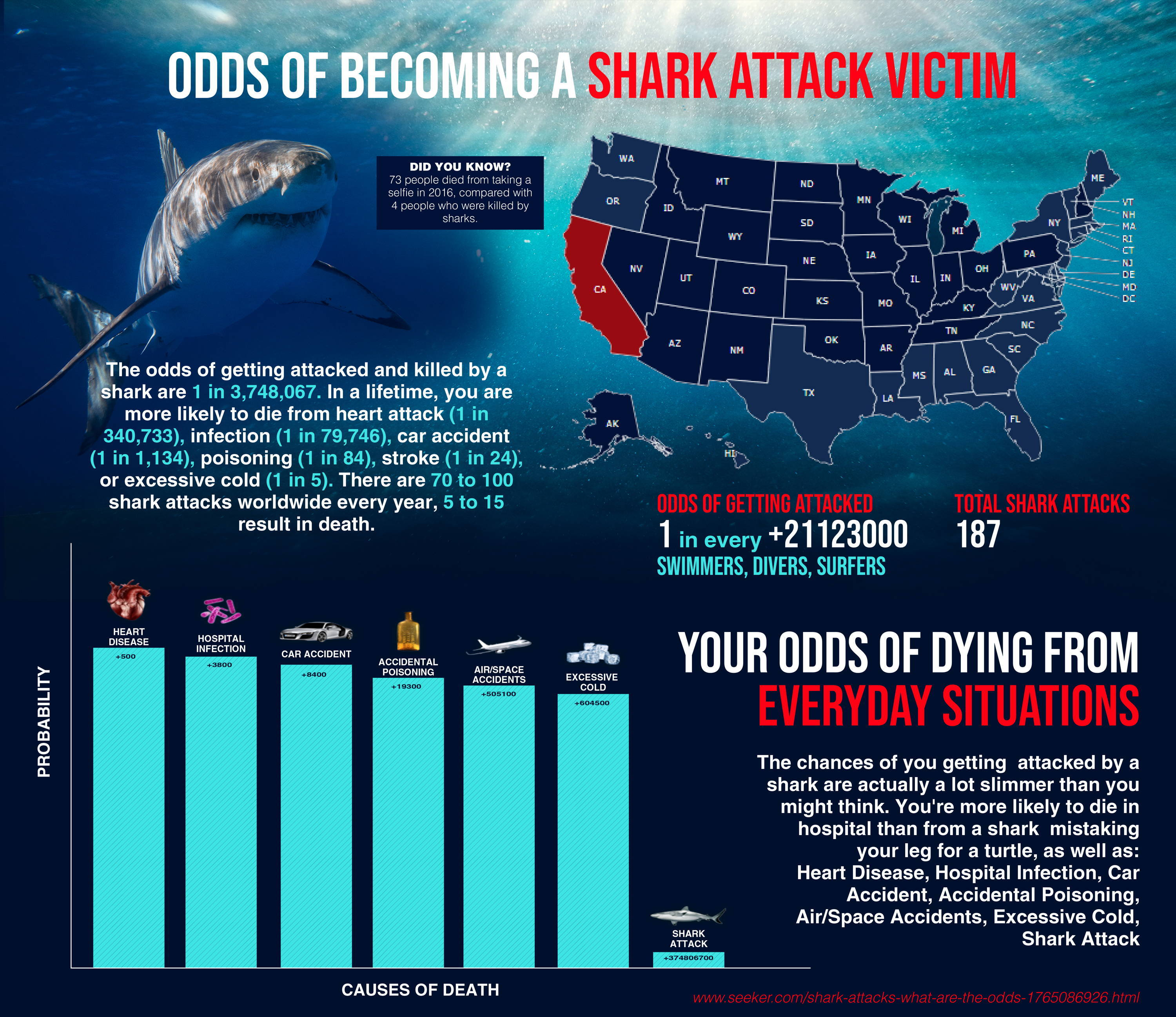 Odds Of Becoming A Shark Attack Victim