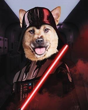 start wars dog