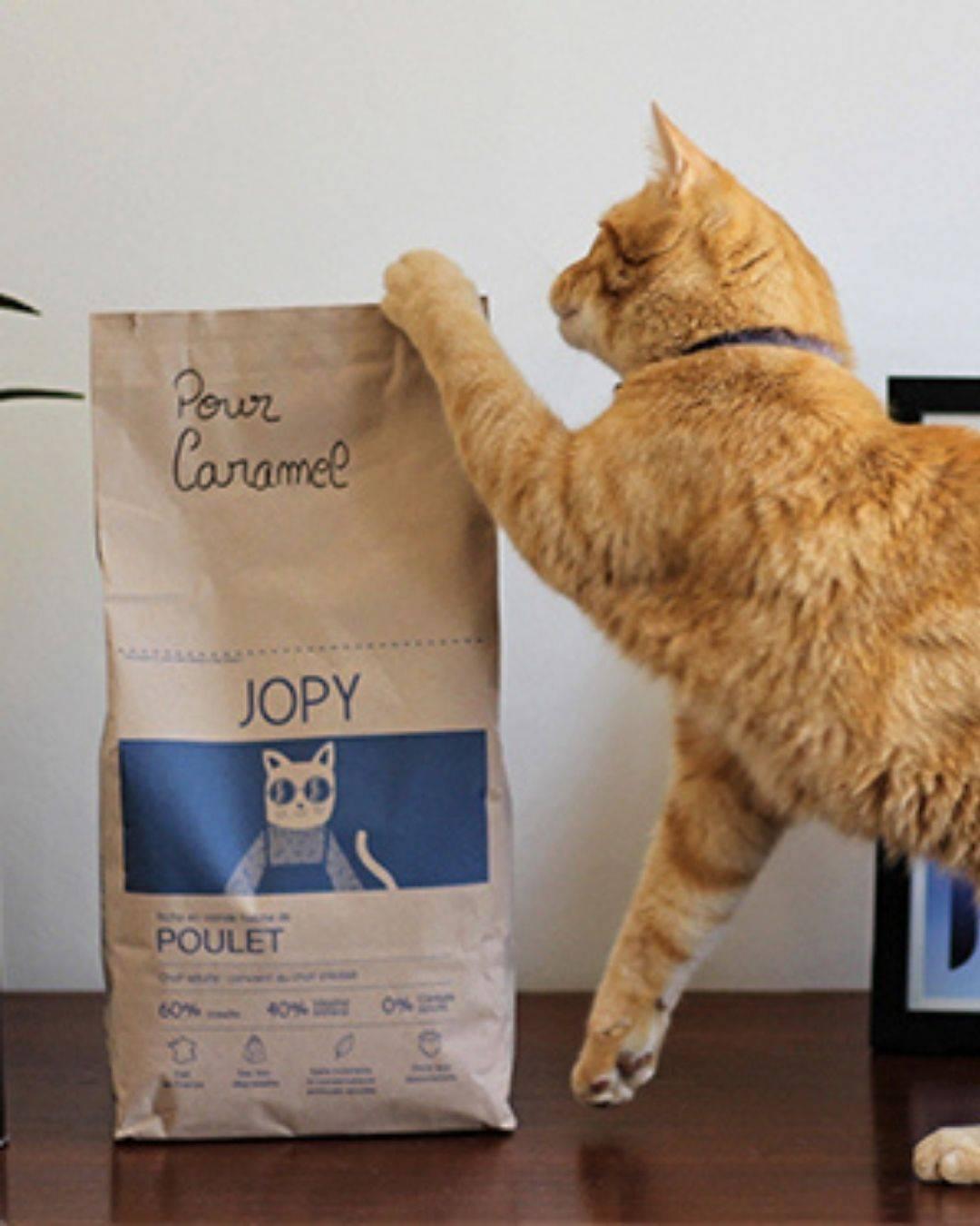 Croquettes chat Jopy sans cereales