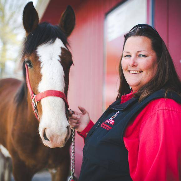 Episode 01 | Amy Trout  The Budweiser Clydesdales are the envy of the equine world, but someone has to train them for greatness. Meet Amy Trout on Budweiser's Warm Springs Ranch in Missouri.