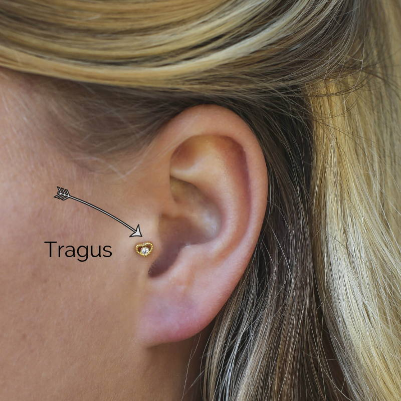 What Is A Tragus Piercing Ivy Dayelle