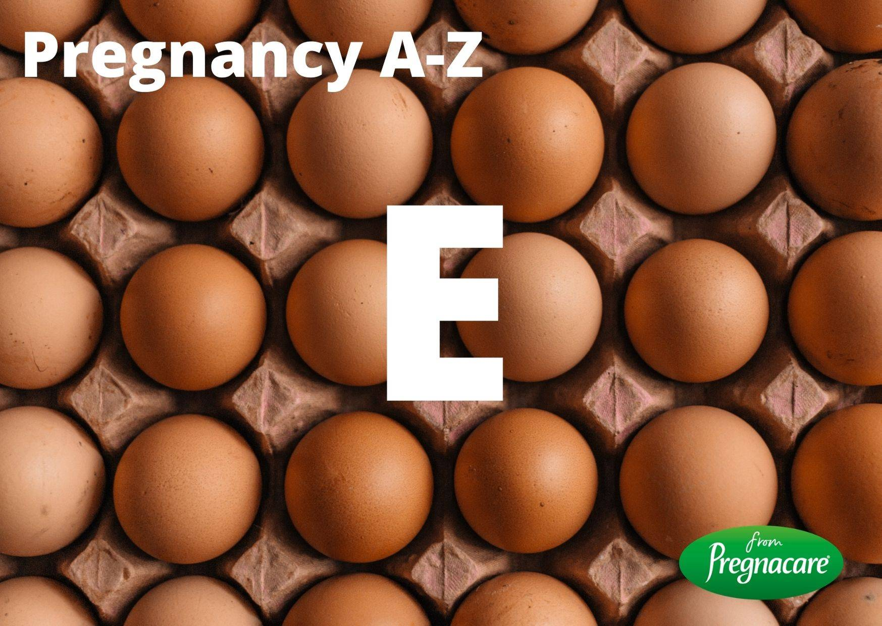 Letter E With Egg Background