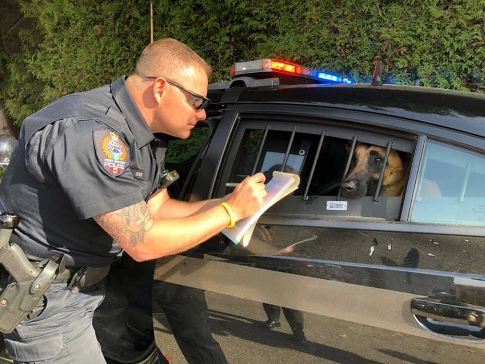 police k9 arrested by police officer joke
