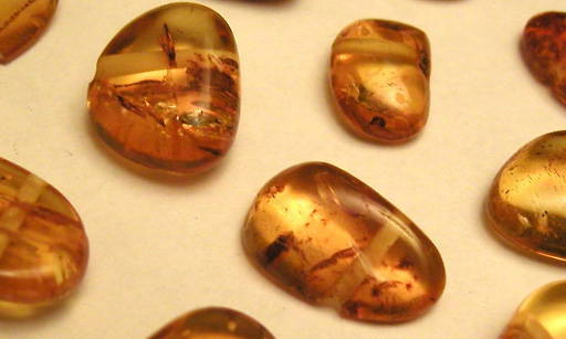 Amber Particles