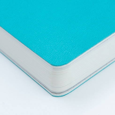 Enhanced with rounded corners - Ardium 2020 Soft weekly dated diary planner