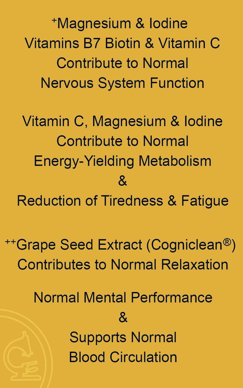 NeuroMem 2 Benefits