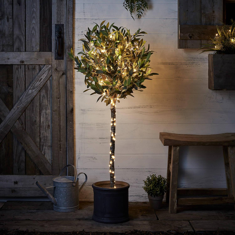 guirlande lumineuse à piles sur arbre en pot.