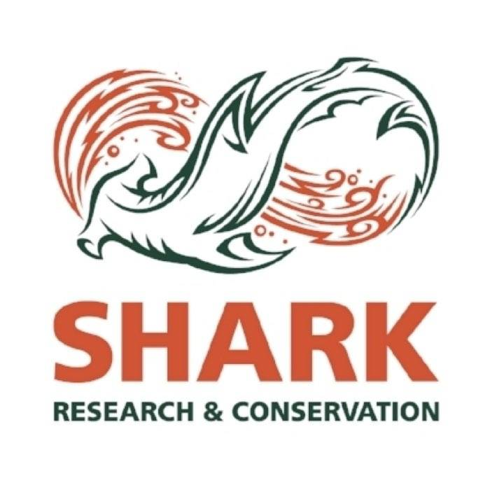 Shark Research and Conservation Program at the University of Miami