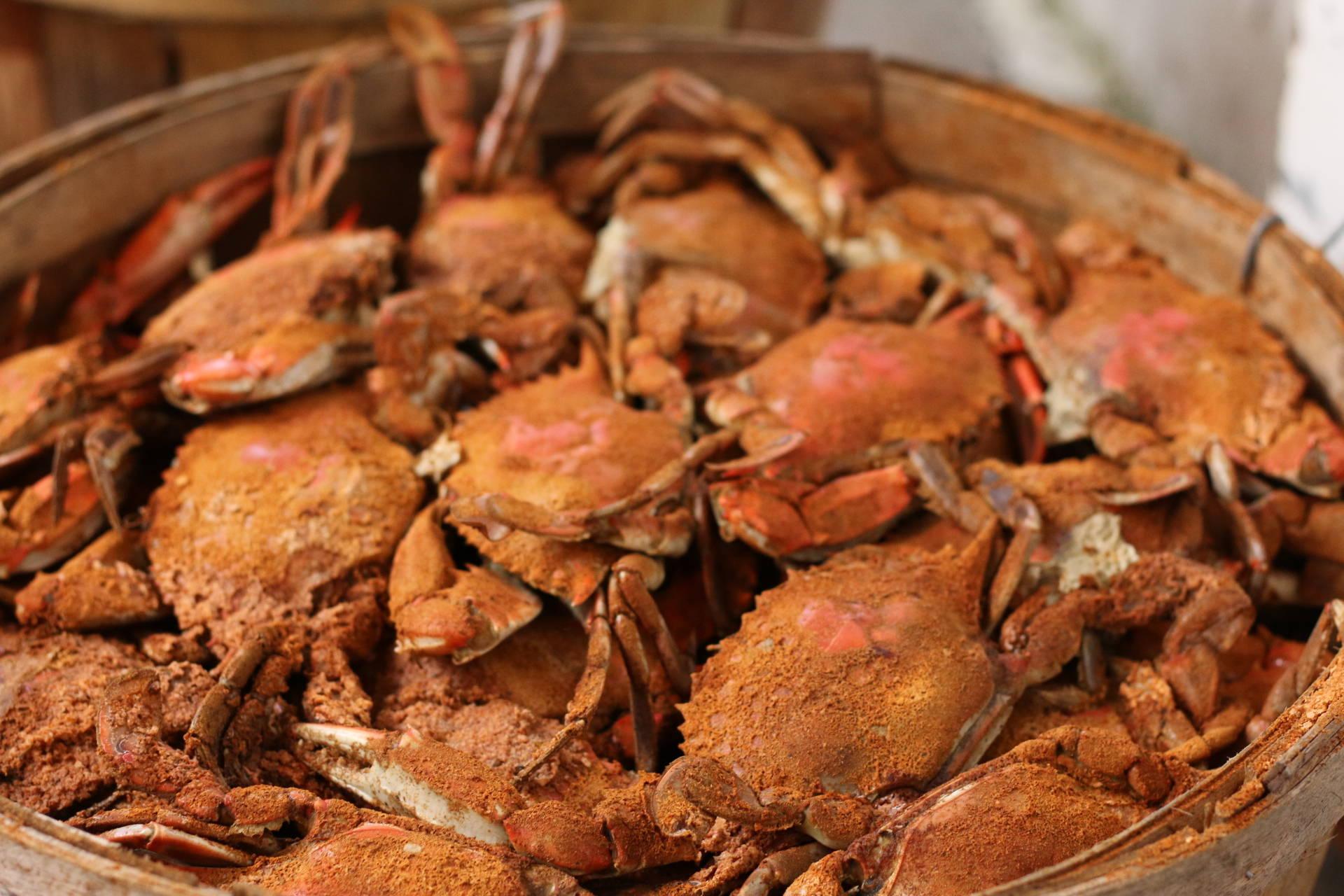 Fresh Steamed Crabs