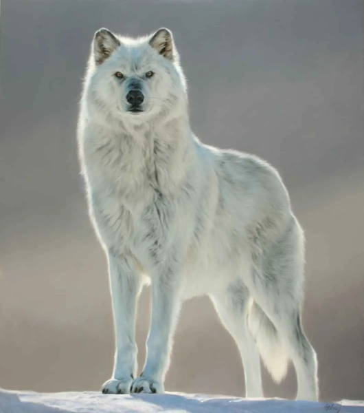 Edward Aldrich Fine Art. Ned Aldrich. Sorrel Sky Gallery. Santa Fe Art. Wildlife Art.