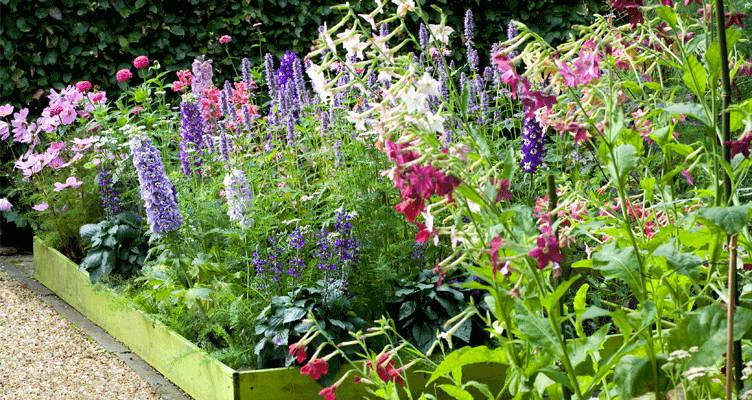 Un jardin pour bouquet,  le rêve de tout amateur de fleurs !