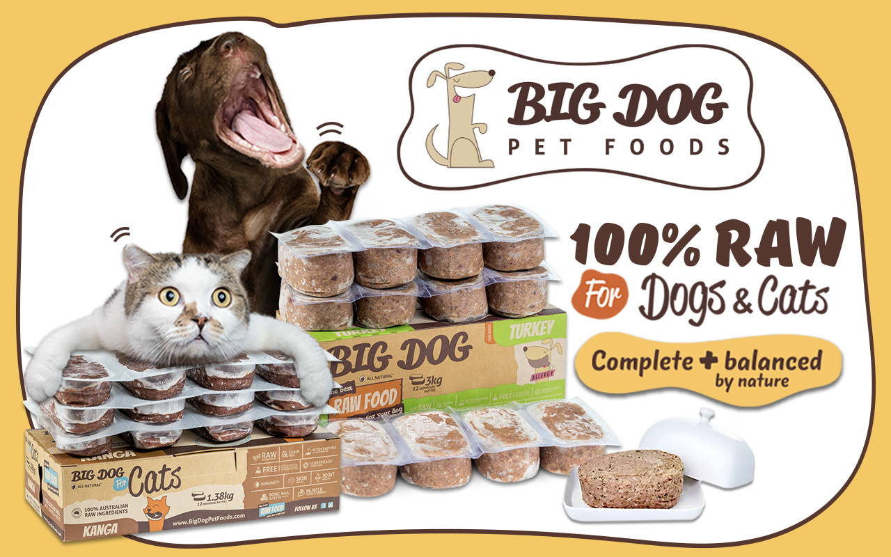 Big Dog barf frozen cat and dog food collection online pet shop pawpy kisses singapore.