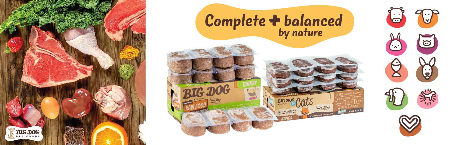 Big dog biologically appropriate raw frozen dog food and raw frozen cat food banner