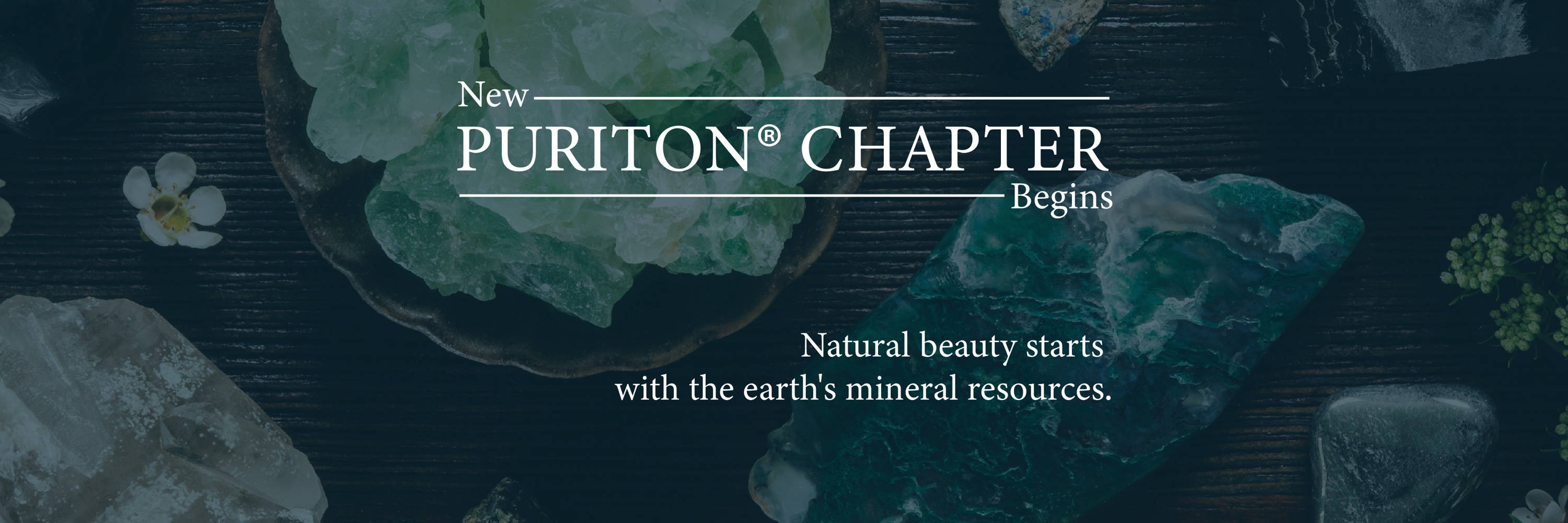 https://www.puriton.us/collections/skin-care
