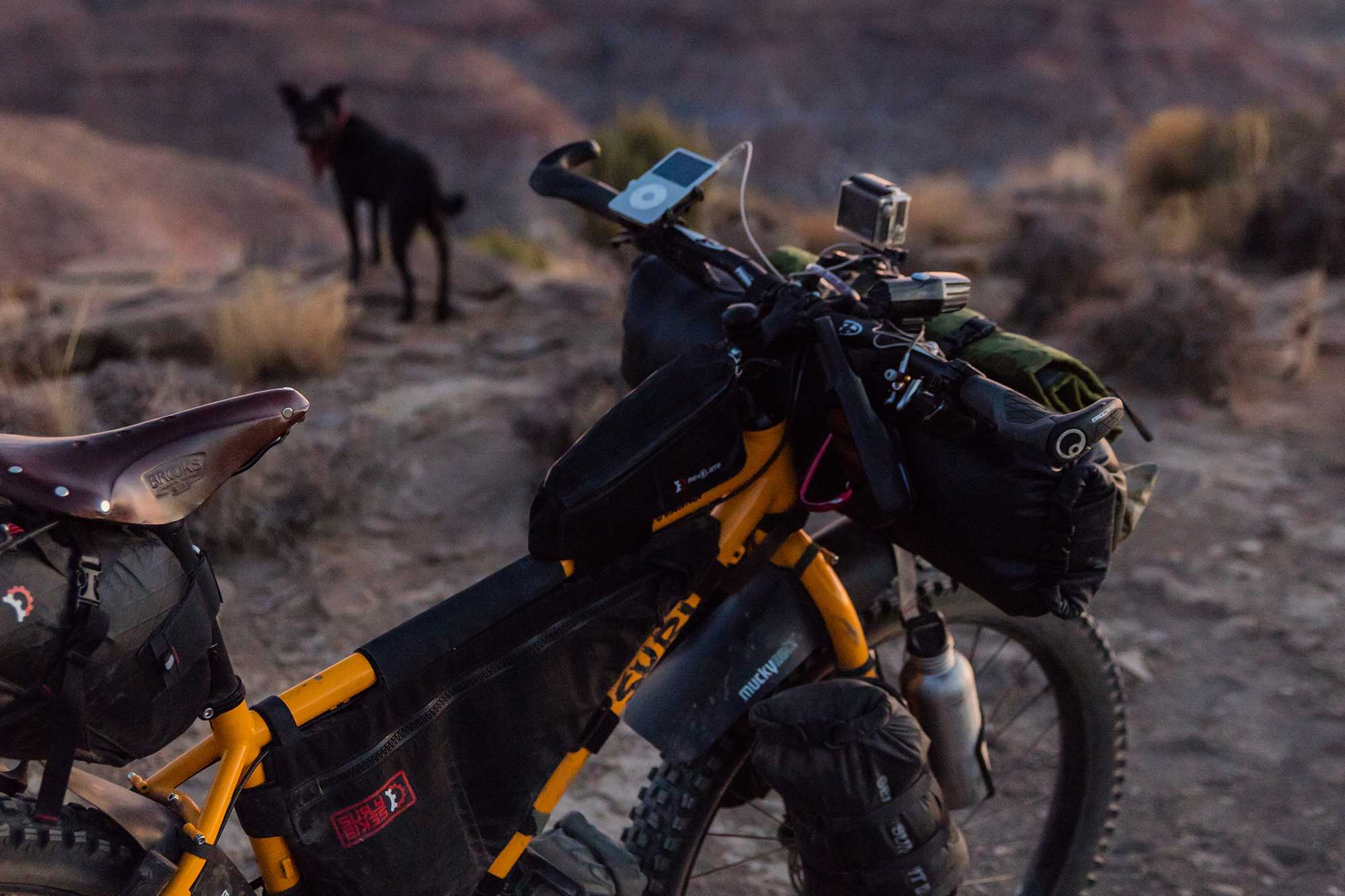 Bikepacking adventure with dog