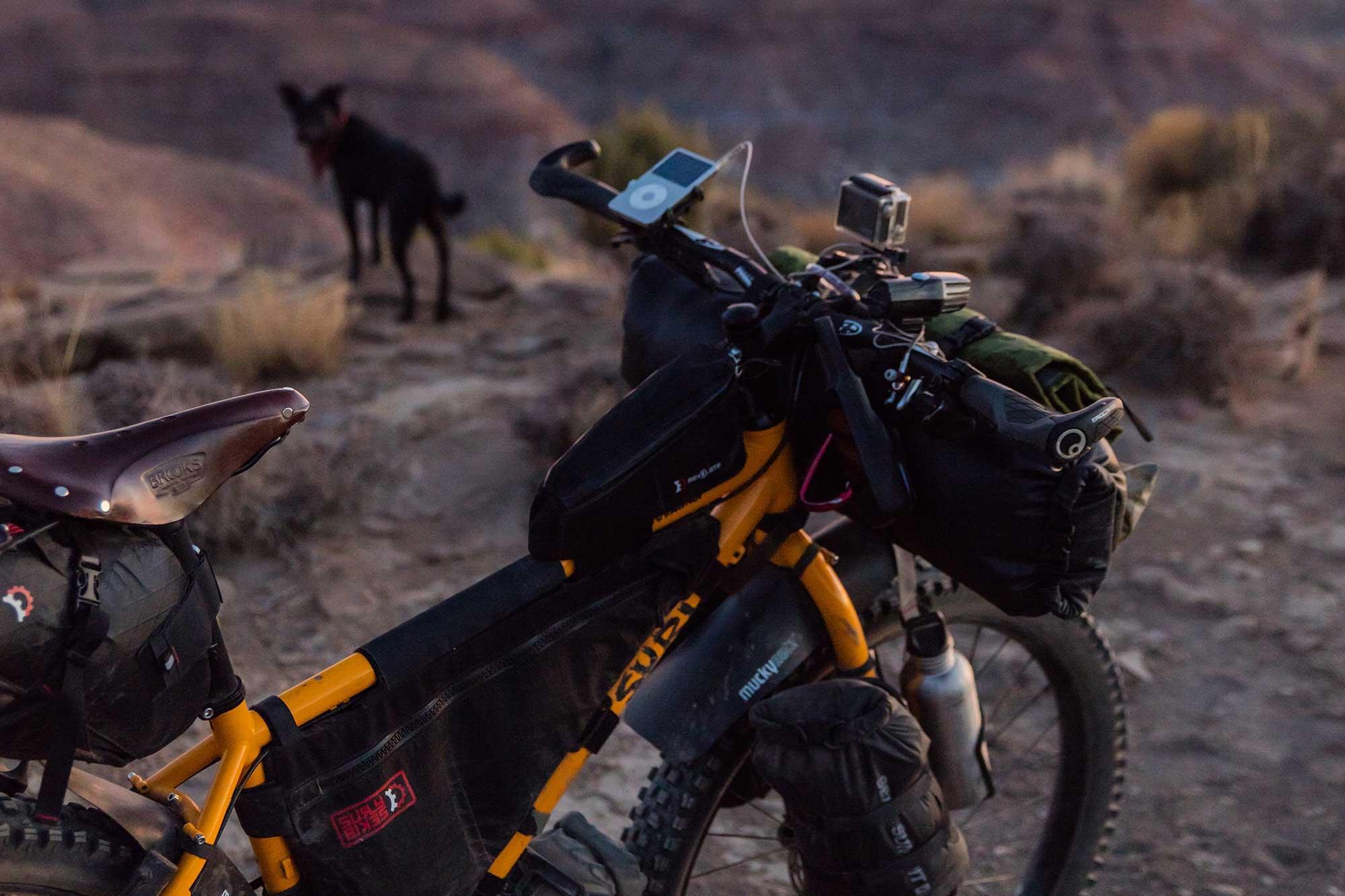 Bikepacking adventure with dog