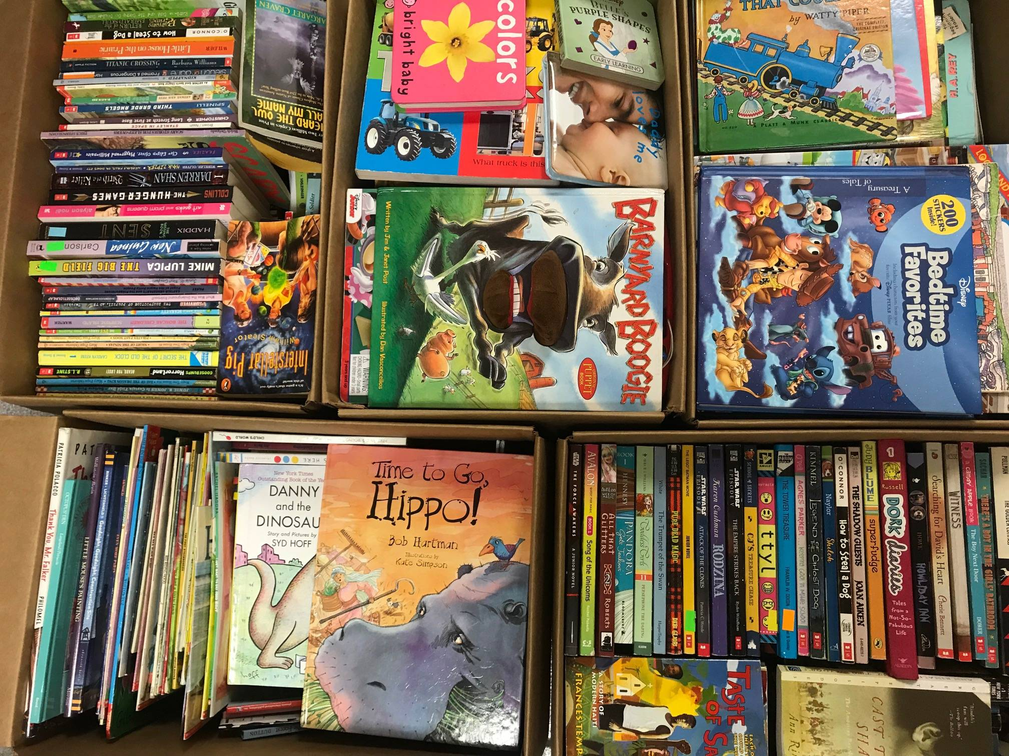 Giant boxes of kids books sold by the book bundler