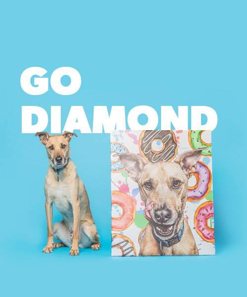 diamond level affiliate program banner