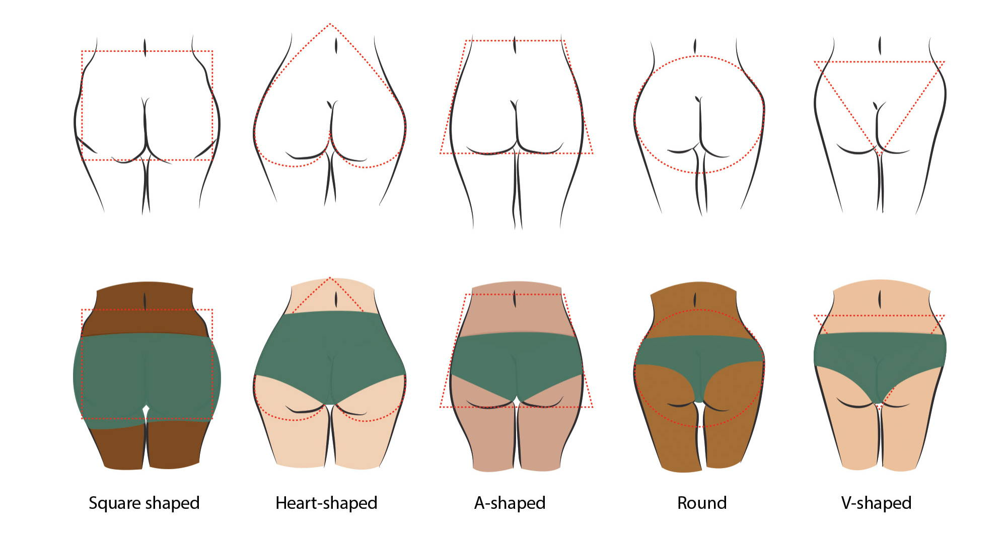 An illustration of the five general butt shapes.