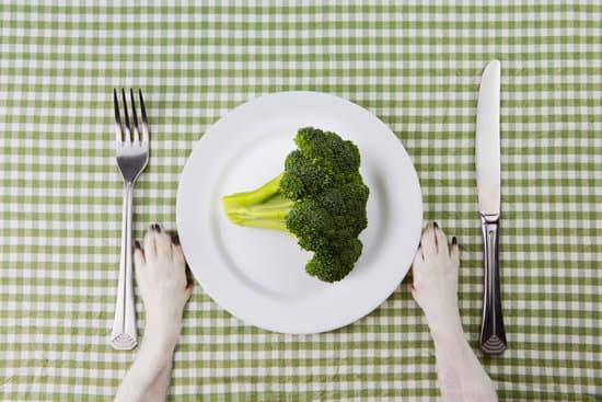An overhead view of a dogs white paws on each side of a white plate holding a serving of broccoli on a green checkerboard tablecloth with a fork and knife on each side